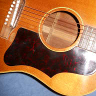 <p>Gibson J-50 1961 natural acoustic guitar</p>  for sale