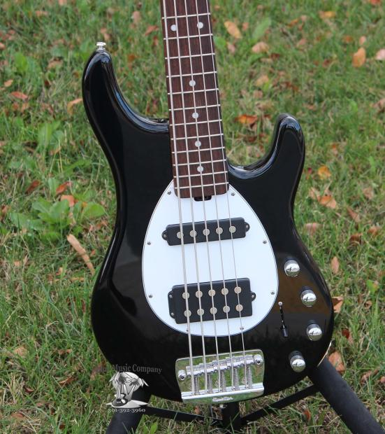 music man sterling 5 string electric bass guitar black finish h s pickups w case reverb. Black Bedroom Furniture Sets. Home Design Ideas