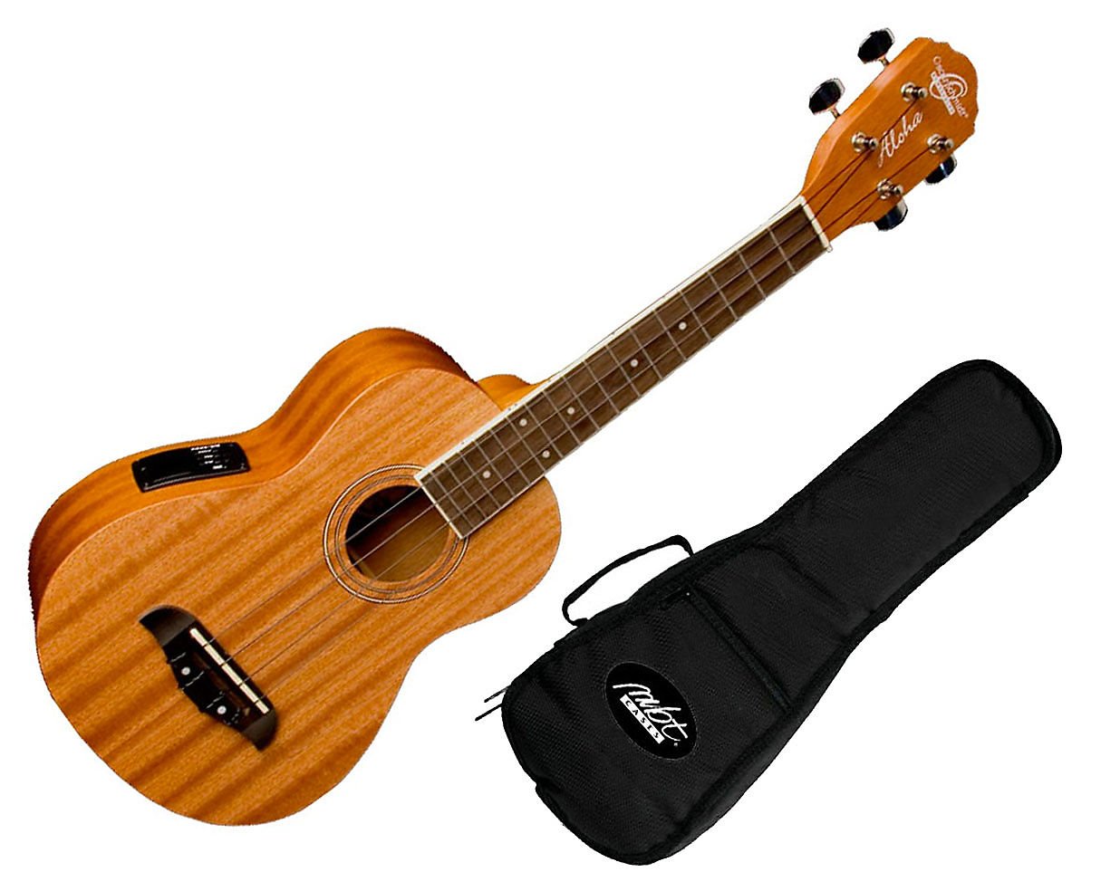 Yamaha F310 also 272261448076 additionally Oscar Schmidt Ou2e M Concert together with Semi Hollow Body Electric Guitar furthermore 1259863 New Oscar Schmidt Oe30ch Delta Blues 335 Style Semi Hollow Body Electric Guitar Cherry Red. on oscar schmidt semi hollow body