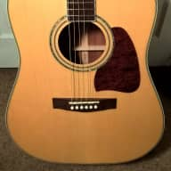 <p>Ibanez &quot;Artwood&quot; AW 100 Dreadnought-Style Acoustic Guitar--Solid Spruce Top; Near-Mint Cond.; w/ HSC</p>  for sale