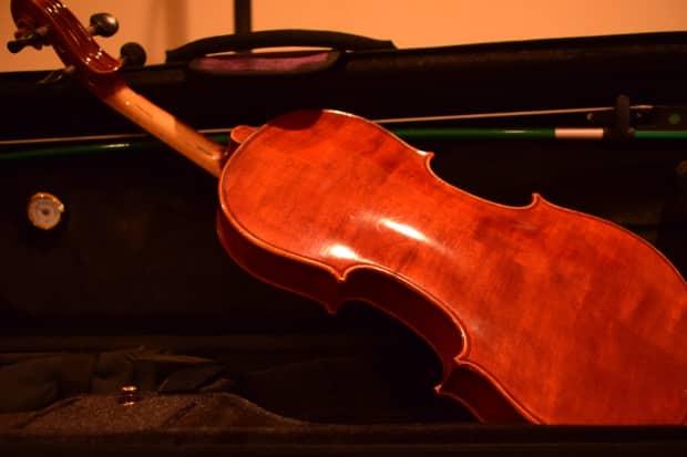 fretless finger guides for full size violin