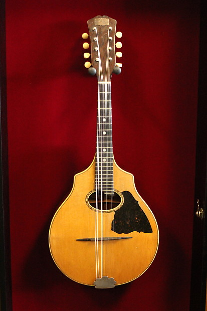 REX Vintage Stave Lute Back Mandolin 1900s Era With Case Great ...