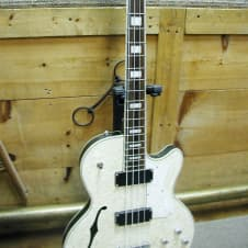 Waterstone TP-4 Electric Bass w. OHSC image