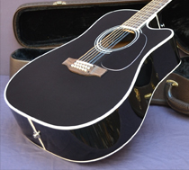 Don Felder Takamine 12-String Acoustic