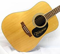 Glenn Frey Takamine EF360GF