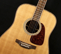 Joe Walsh Takamine Acoustic