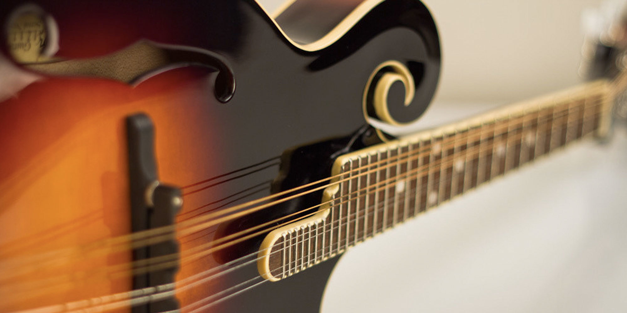 Image result for Good Beginner Mandolin-Things To Know