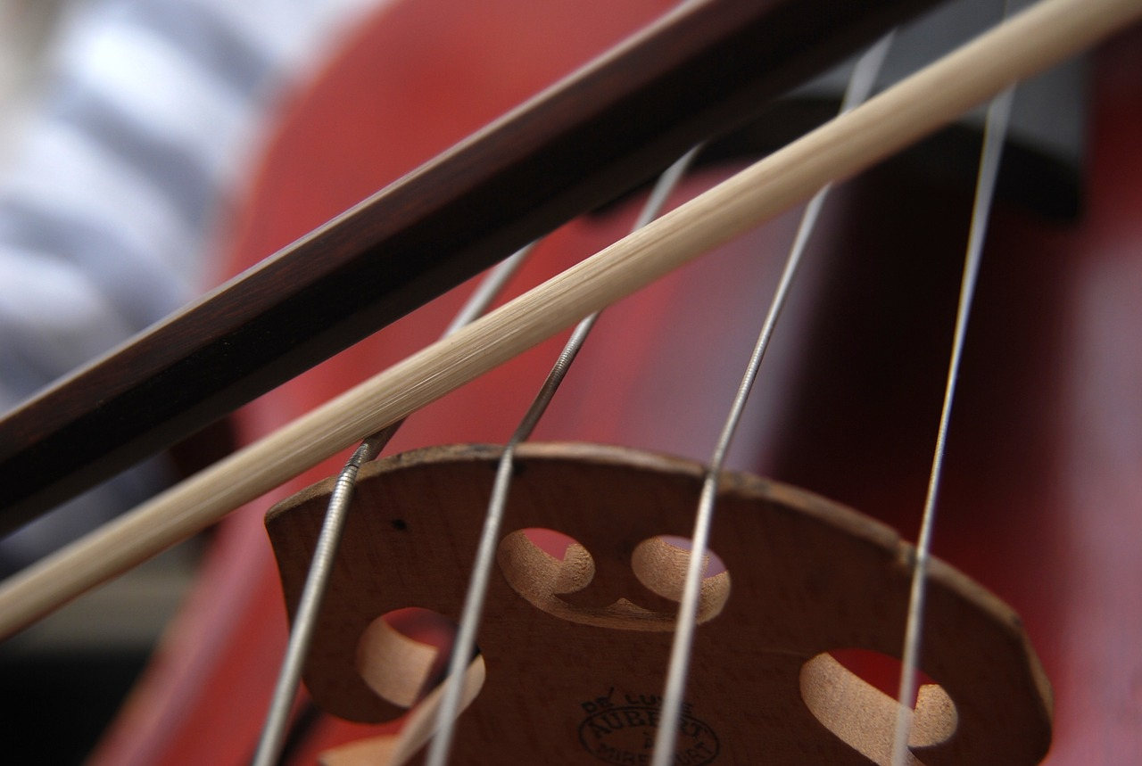 Steel core strings on a cello.