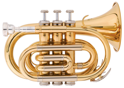 Where to Find New, Inexpensive Brass and Woodwind | Reverb News